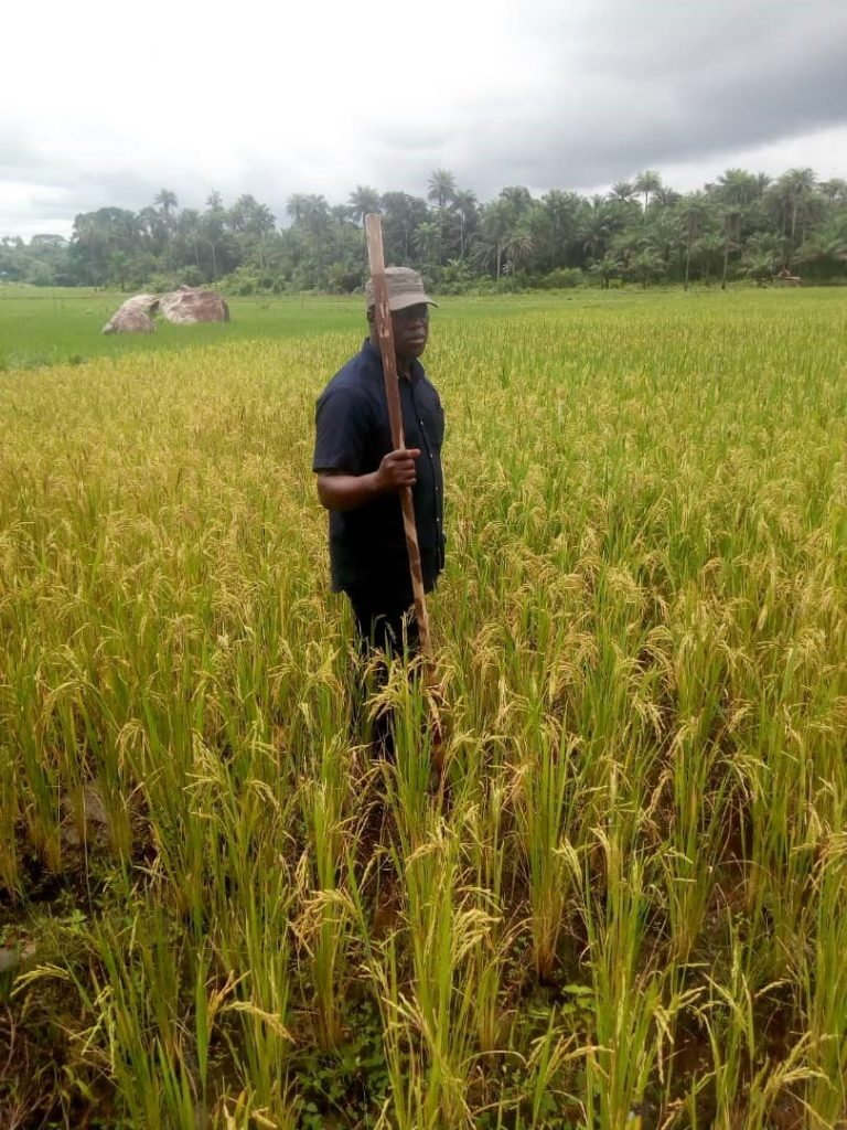 Chief Minister in his 444 acres of farmland